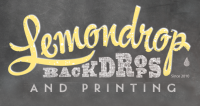 LemonDrop Shop Coupons, Promo Codes And Sales